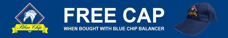 Blue Chip - Free Cap