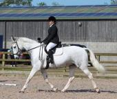 Davina Carter - This is Mr Ed, who has benefited from the Protechmasta infrared range purchased through the Harry Hall One Club!