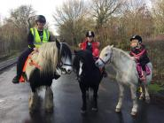 Elizabeth Anderson1 - I love the One cCub as it gives us peace of mind and great value, savings on anything our little herd of previously unloved rescue ponies might ever need. As well as kitting out the herd of minons on a budget.