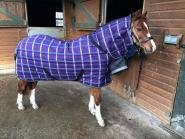 Julia O'Connor - In his new Snugmasta 350g Fixed Neck Stable Rug! Gorgeous!
