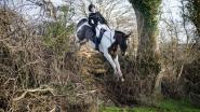 Paula Williams - One Club has helped keep the hunting going all winter!!