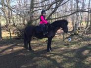 Sarah Russell - My daughter Livia and her new pony Bonnie (only had her 3 weeks) wearing the Protechmasta saddle pad and thanks to the One Club amazing discounts we have managed to buy lots of pony and rider essentials from grooming kits, treats and jodphurs