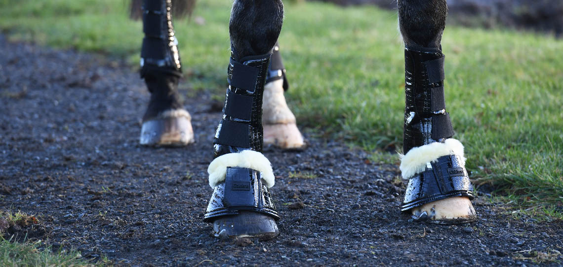 Horse Boots and Bandages