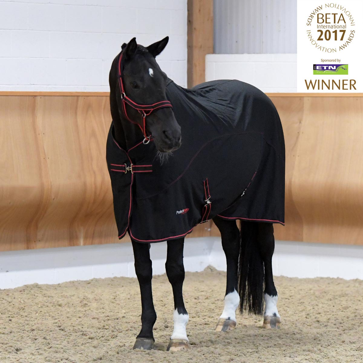 Protechmasta Infrared Technology Horse Rug  529635529
