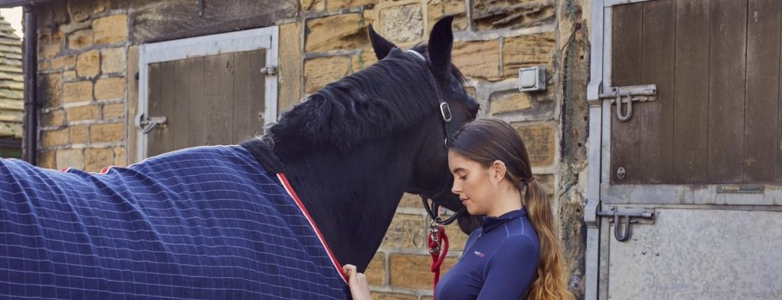 Clipping Horses