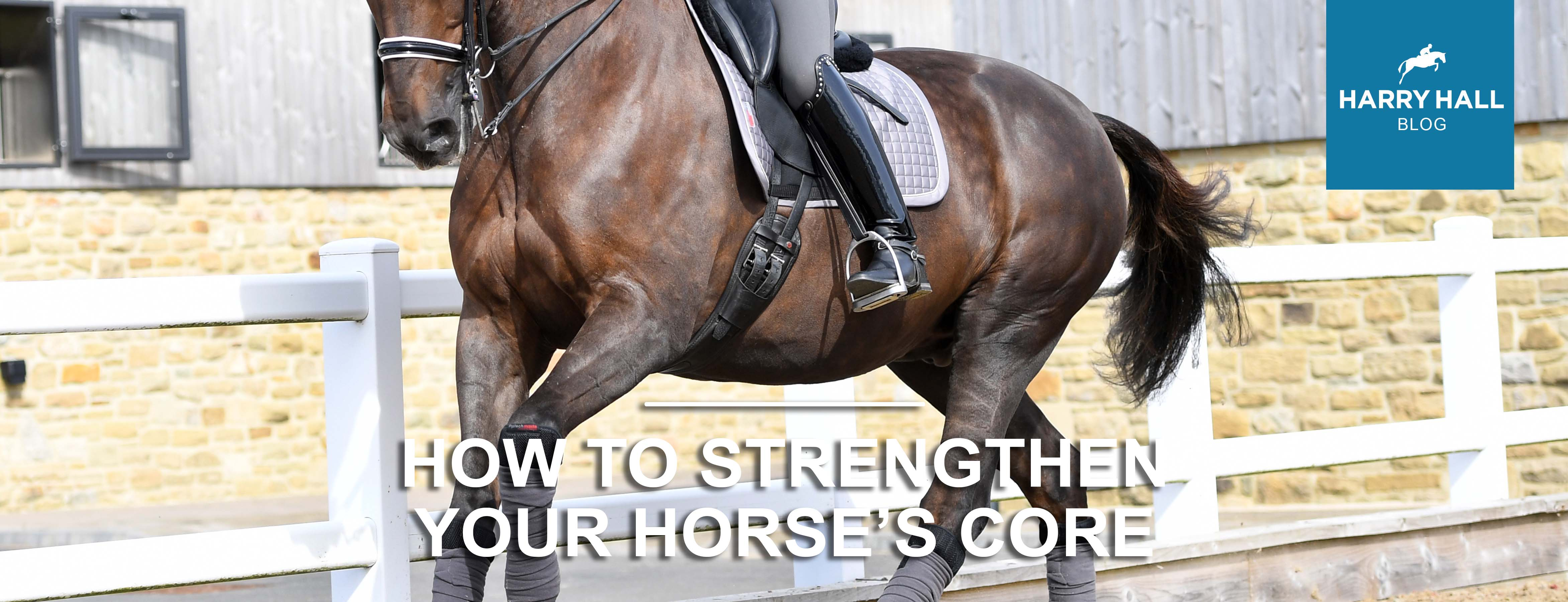 Improve Your Horse's Core