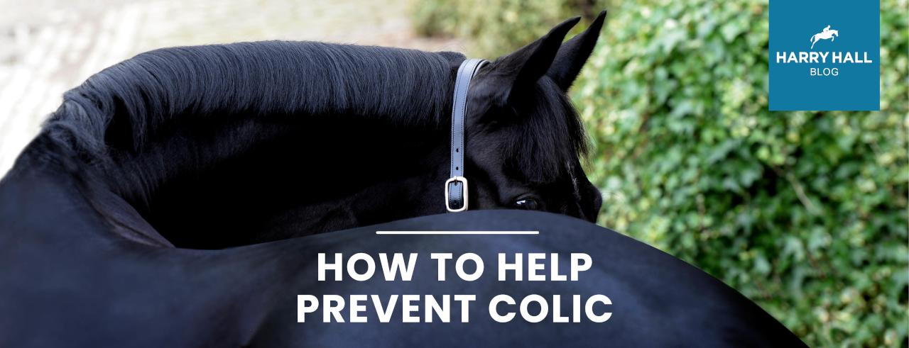 How to Help Prevent Horse Colic