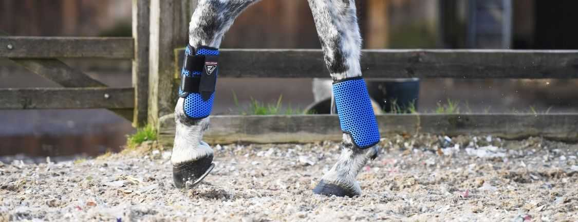 Understanding which breathable boots are best for your horse