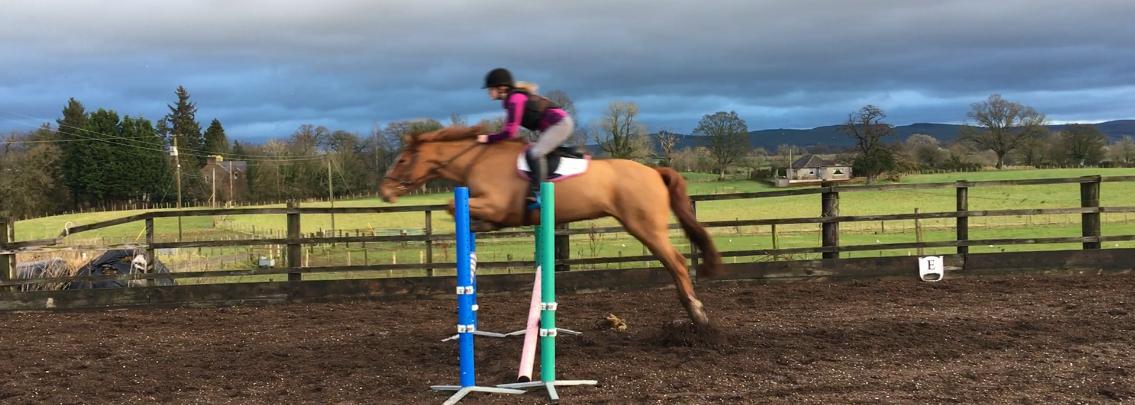 Moving Onto Horses