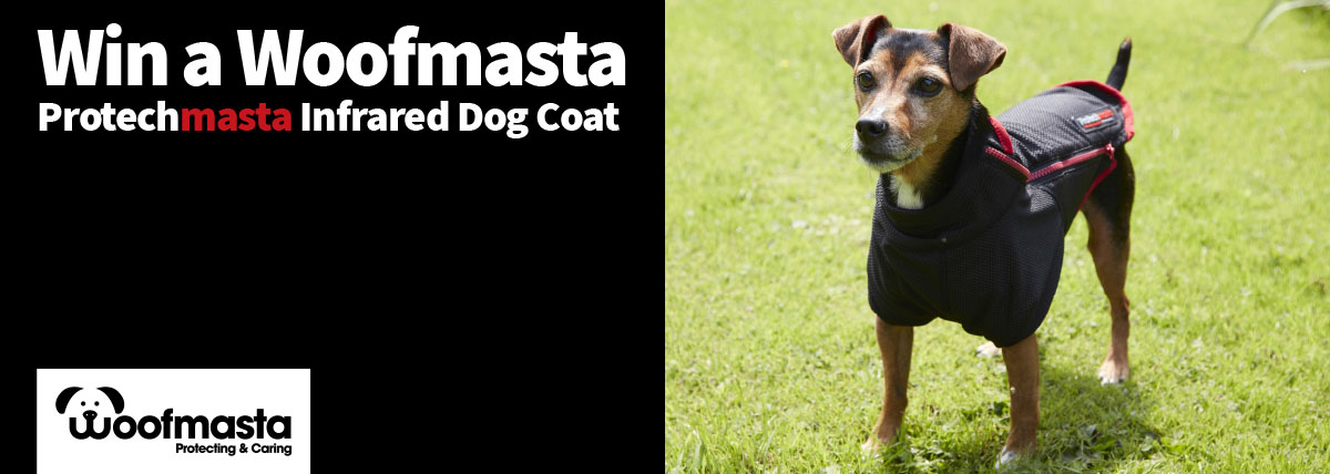 Win the Protechmasta Dog Coat