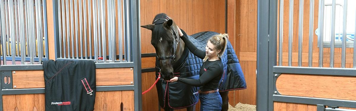 Worming Horses - How Often