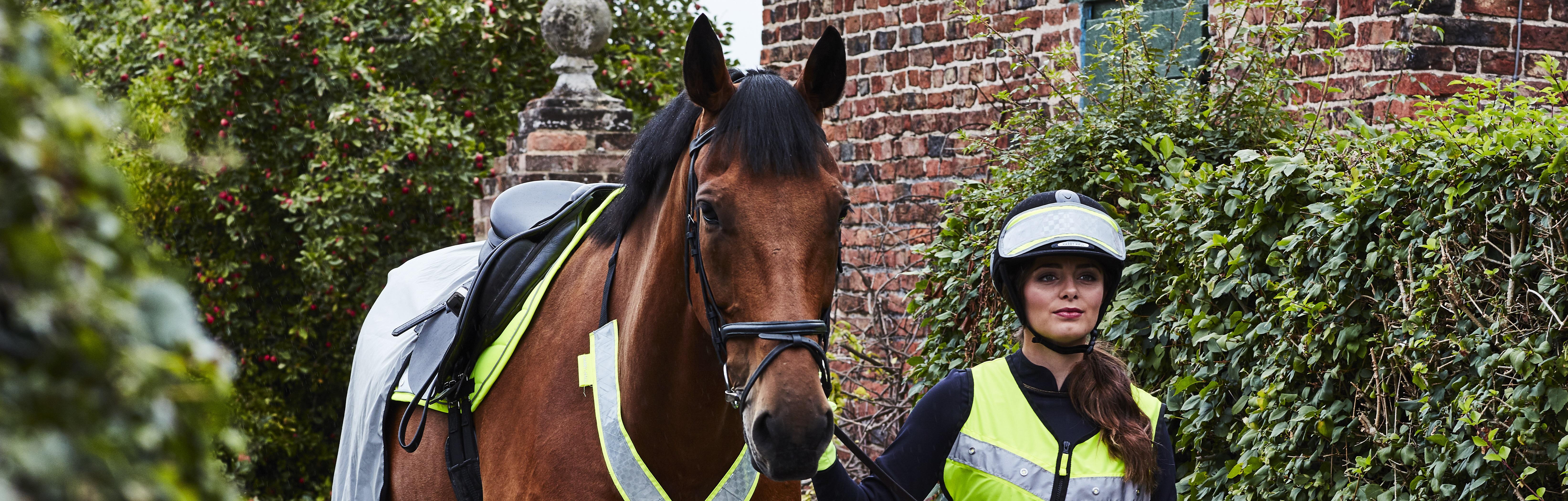 Public Liability Insurance for Horses