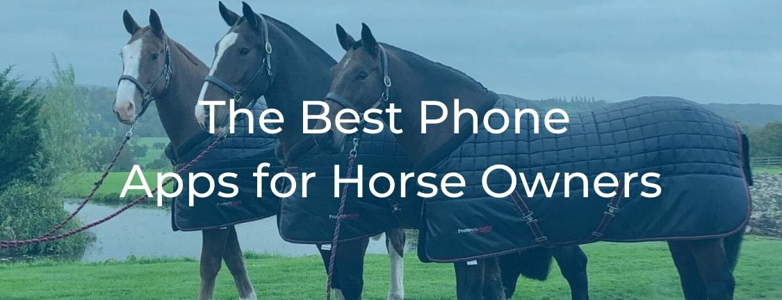The Best Apps for Horse Owners