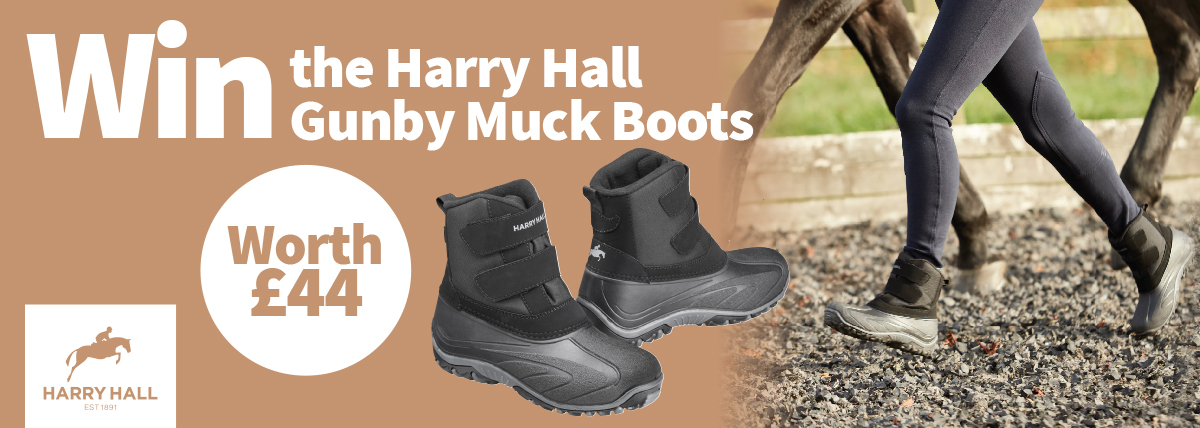 Win The Gunby Boots