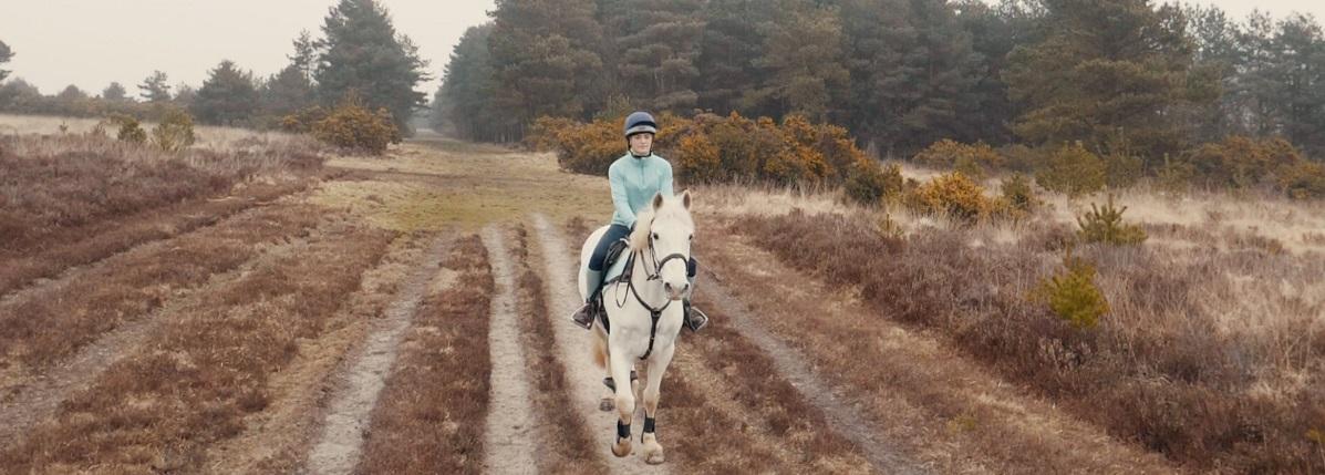 Managing School and Horses