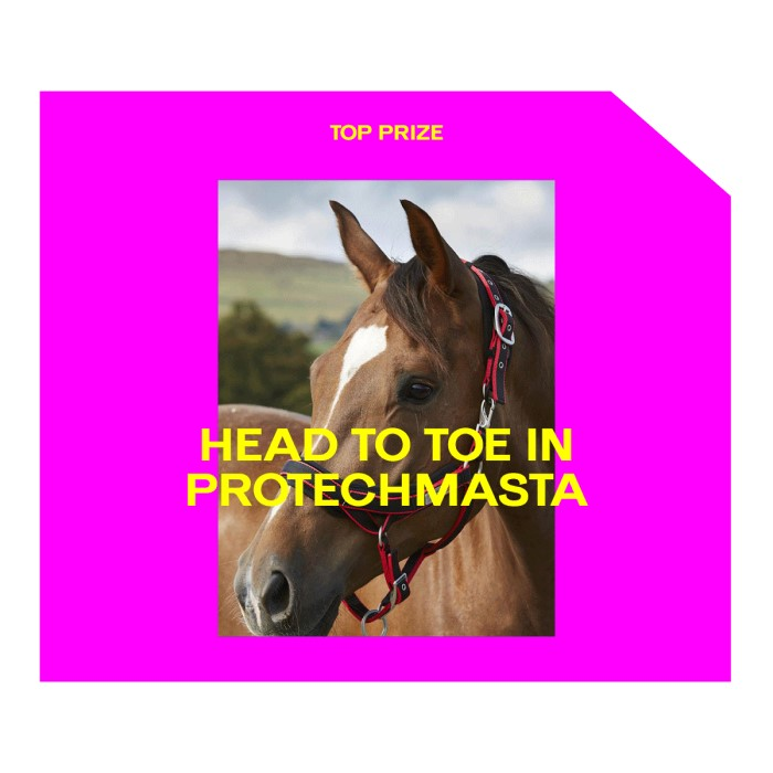 Top_Prizes_Supplied_W5_PROTECHMASTA