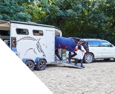 Horse Trailer Insurance