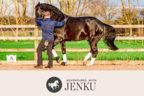Adventures with Jenku - Save 20%