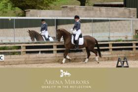 Arena Mirrors - 4 Arena Mirrors for £1,000