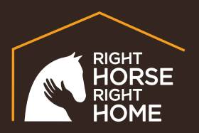 Right Horse Right Home - Save 50%