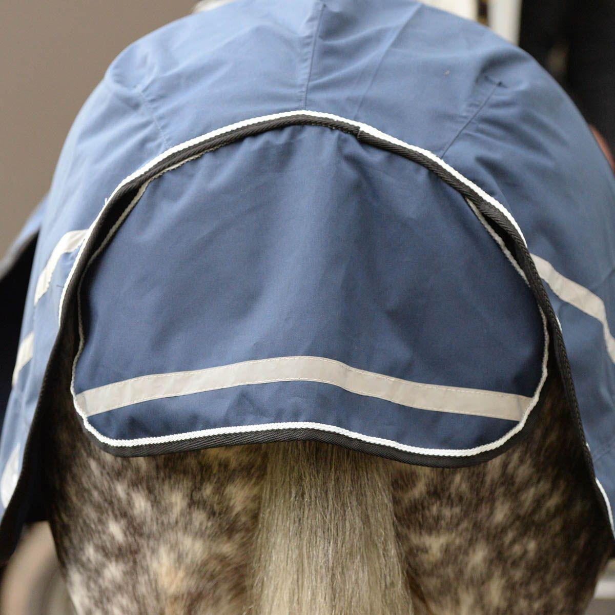 Harry Hall Black Friday Equestrian
