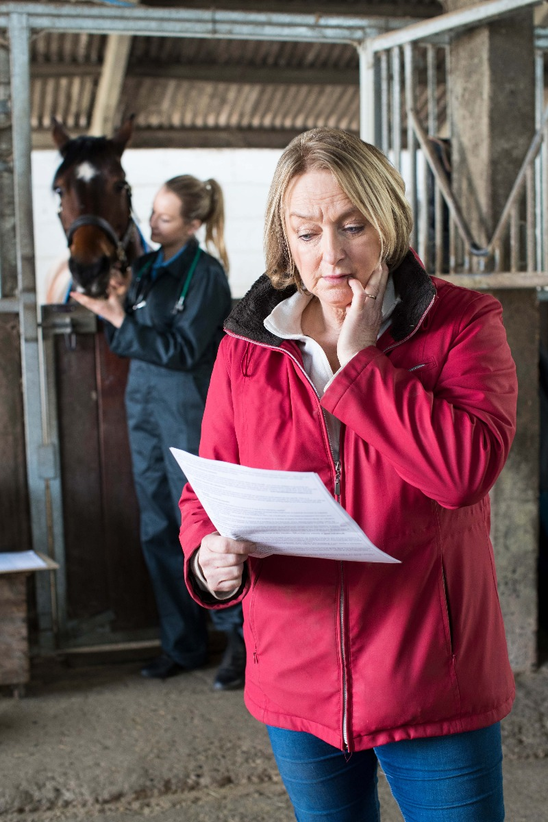 Concerned horse owner worried about costs
