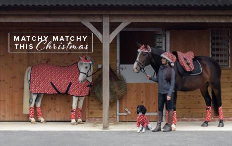 Christmas | Harry Hall