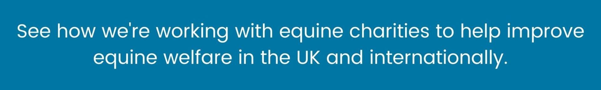 Equine charities and harry hall