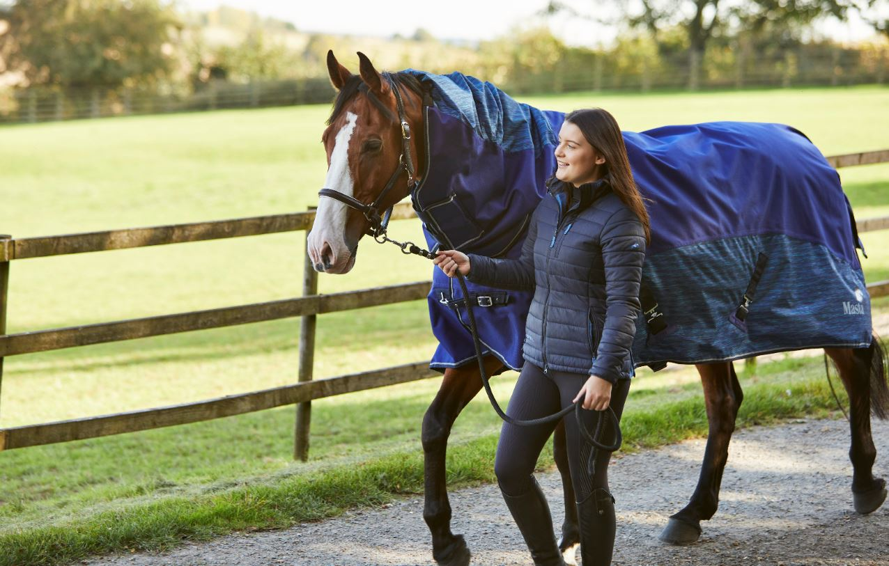 Mane loss in horses