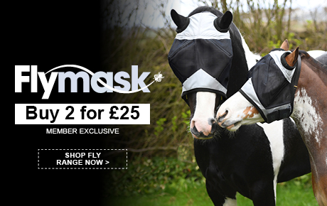 Fly Mask 2 for £25 | Harry Hall