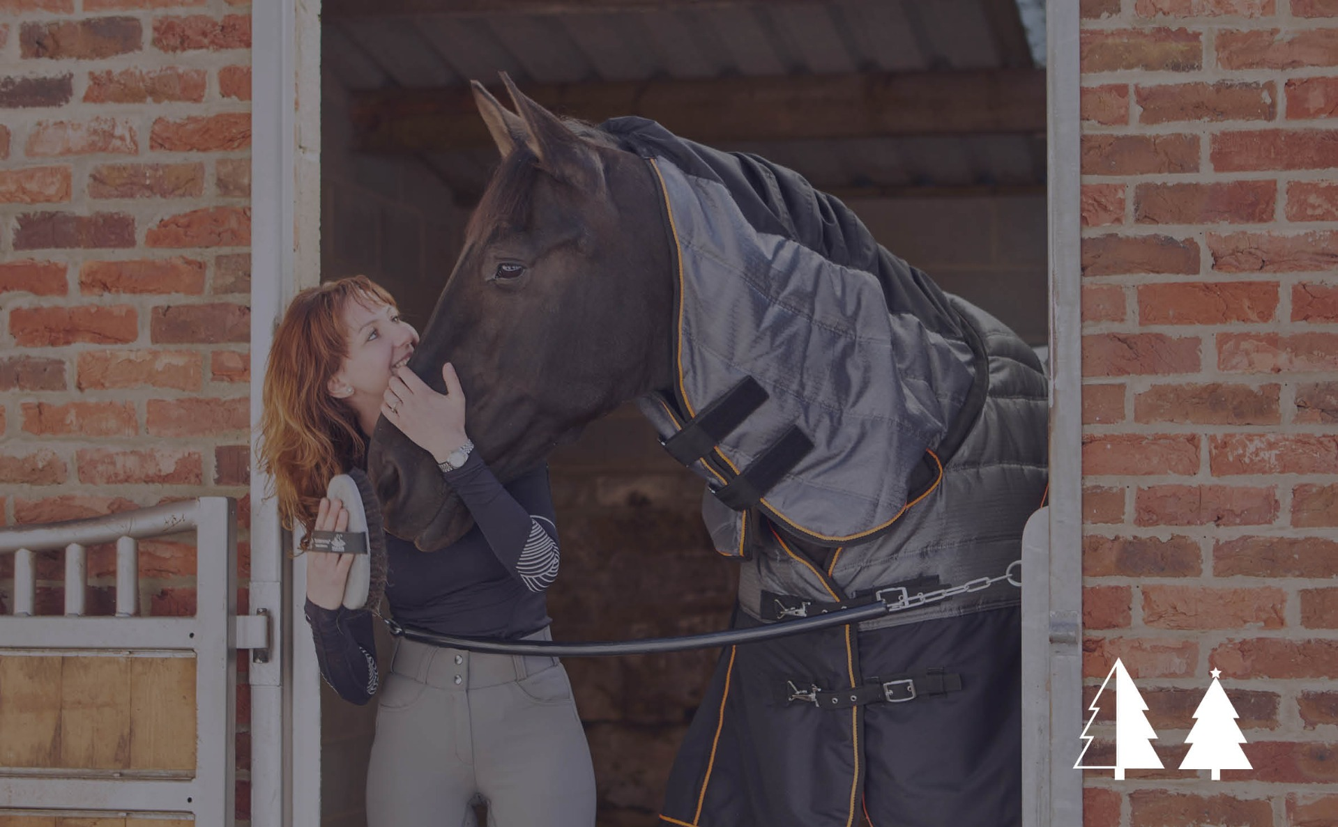Gifts for Horses | Harry Hall