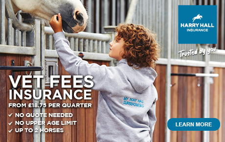 Vet Fees Insurance from £18.75 | Harry Hall