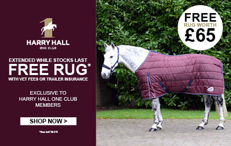 Free Rug with Insurance | Harry Hall