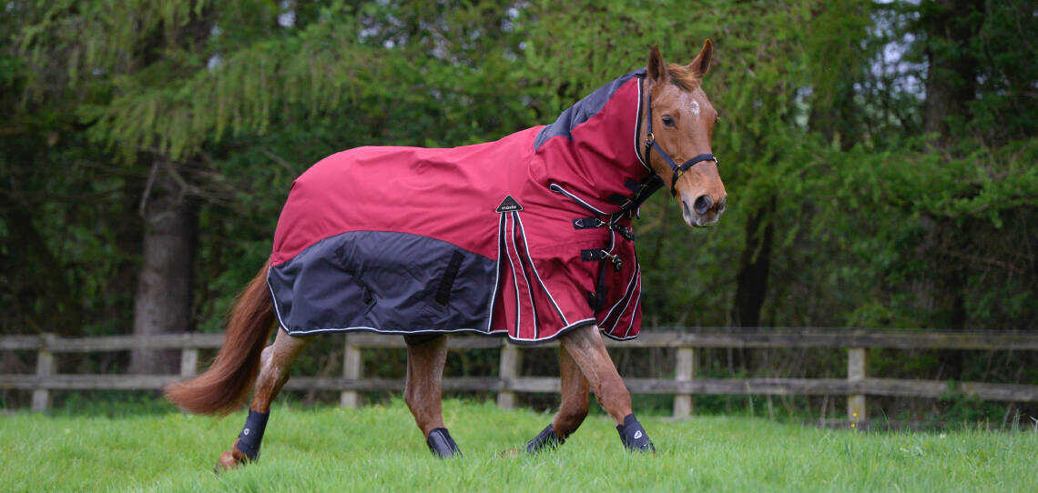 Fieldmasta Turnout Rugs