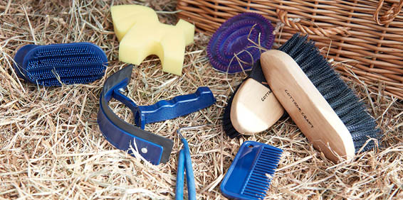 Stable Essentials | Harry Hall