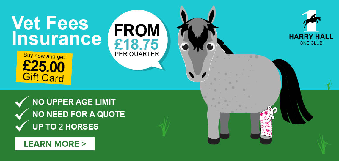 Vet Fees Insurance - Only £75 per year   Harry Hall