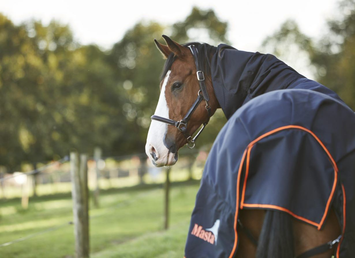 Horse rugs guide