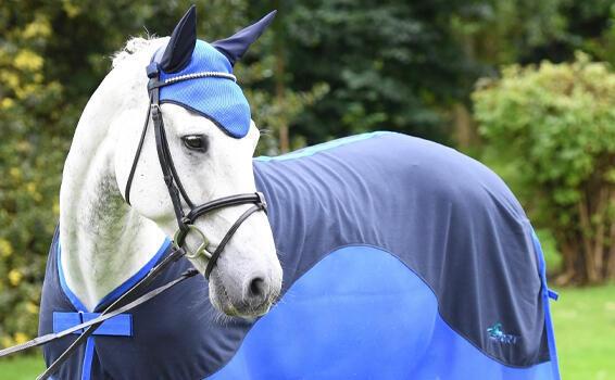 Horsewear | Tottie