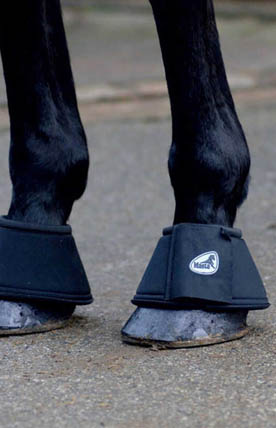 Horse Boots - Harry Hall