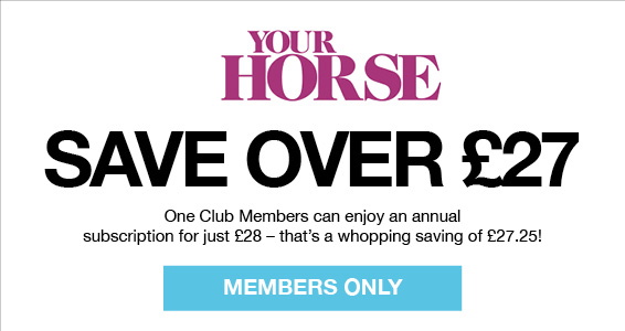 Your Horse | Members Save More at Harry Hall