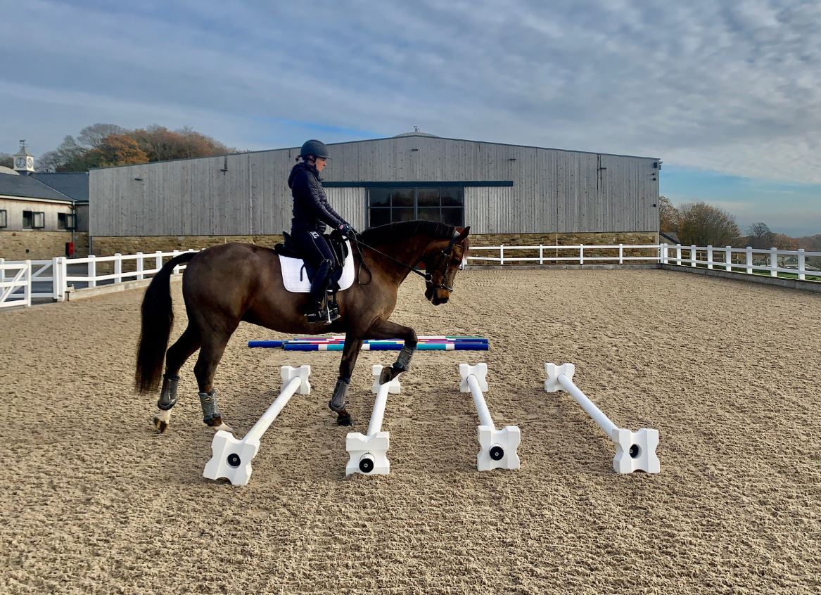pole exercises for horses