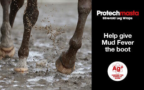 Help Give Mud Fever the Boot