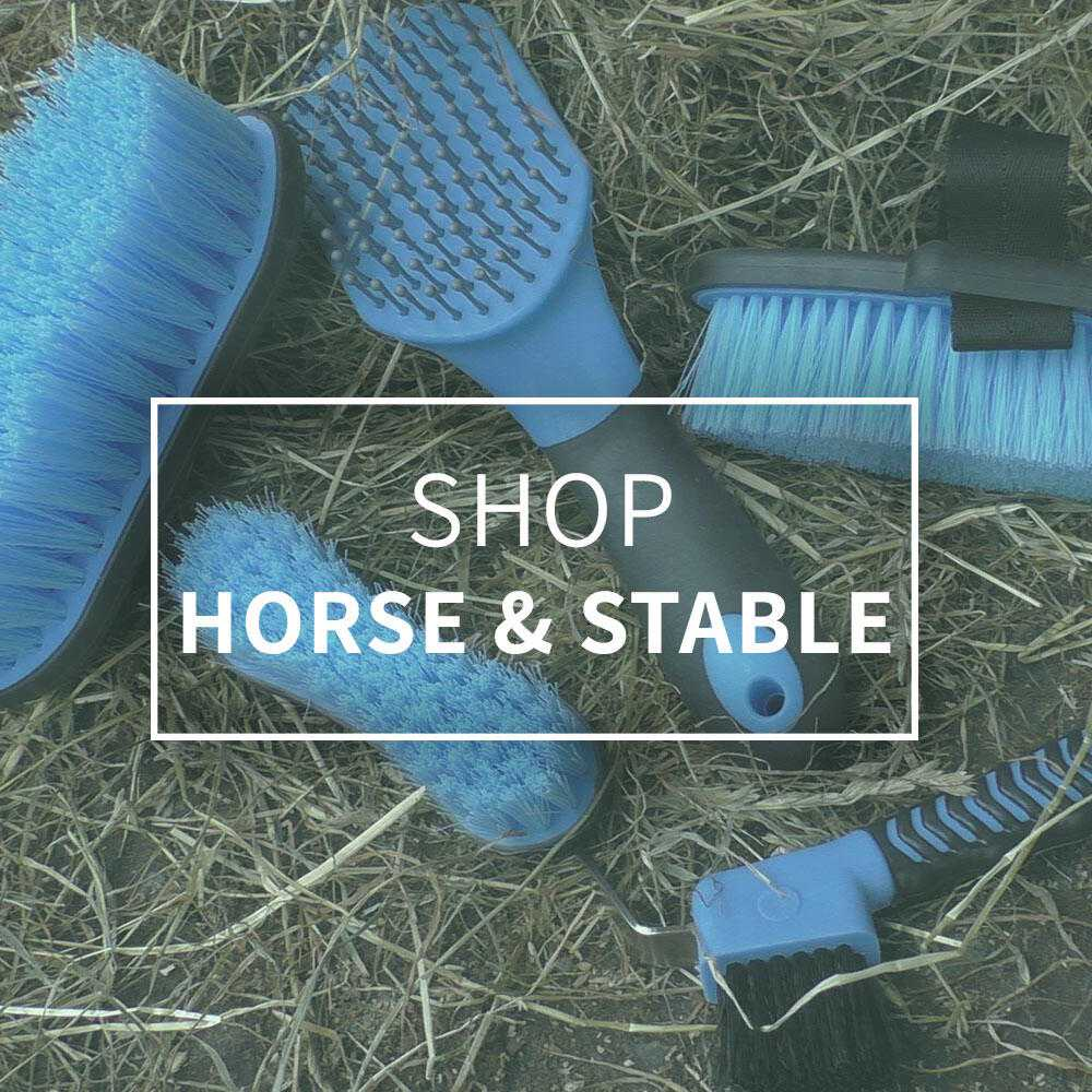Shop Horse and Stable | Harry Hall