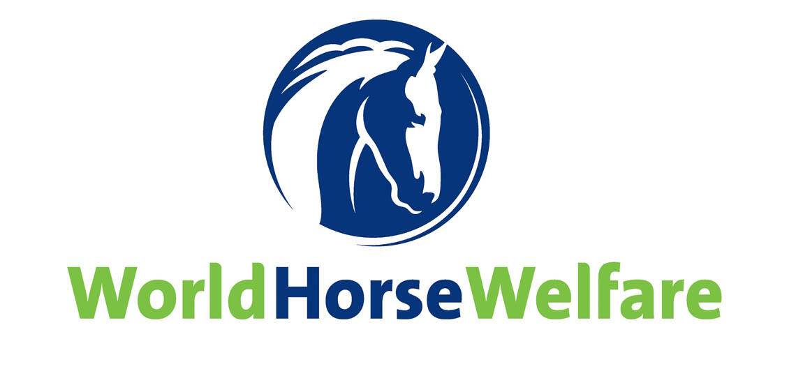 World Horse Welfare Charity Partner | Harry Hall