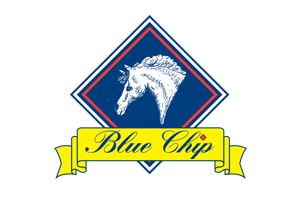 Blue Chip | Shop Brands at HarryHall.com