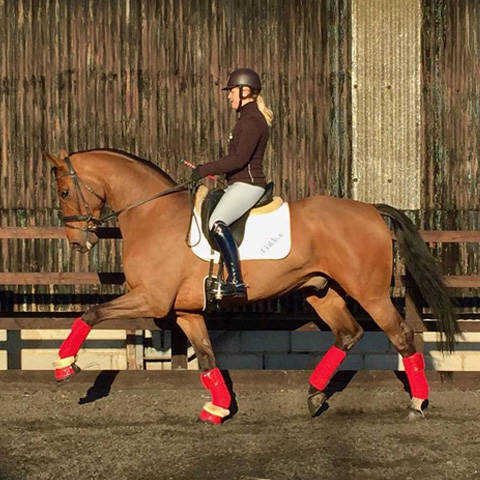 Olivia Oakeley | Caldene Sponsored Rider