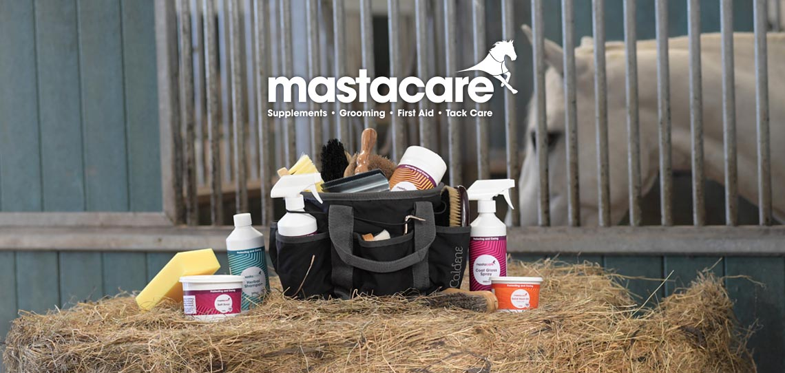 Introducing Mastacare | Harry Hall