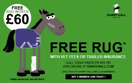 Free Rug Worth £60| Harry Hall