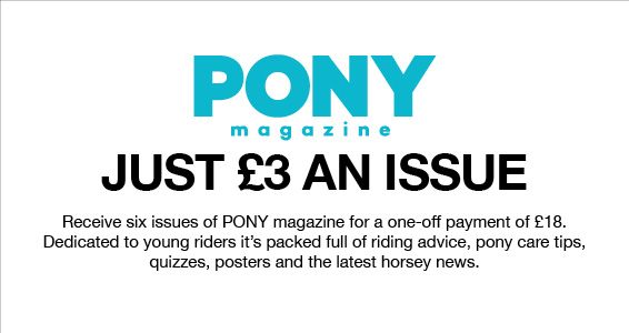 Pony Magazine   Members Save More at Harry Hall
