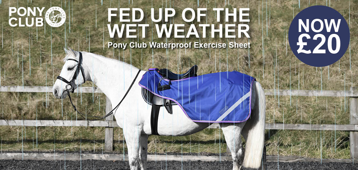 Feb up of the wet weather | Harry Hall